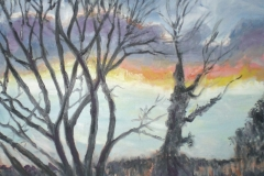 SMALLFORD SUNSET 3 - Artist © Elspeth Jackman