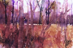 TREELINE Watercolour - Artist © Janet King