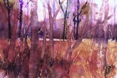TREELINE Watercolour - Artist © Janet King