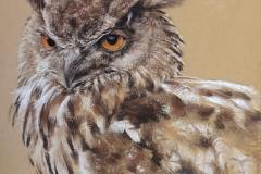 CEDAR THE EAGLE OWL - Artist ©Tracey Gent