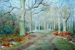 End of Winter, Ashridge Artist © Eileen Bainbridge